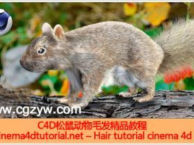 C4D制作松鼠毛发精品教程附工程文件 Hair tutorial cinema 4d