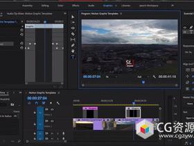 Premiere Pro自定义界面与制作预设模版高效工作技巧视频教程