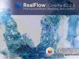 C4D流体动力学模拟插件破解版 NextLimit RealFlow 2.5.3 Mac