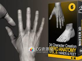 Zbrush人体解剖数字艺术手部脚部训练视频教程