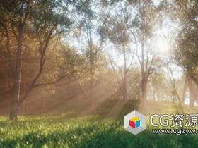 Octane渲染器创建自然体积光效果C4D教程