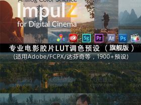 VisionColor ImpulZ LUTs专业电影胶片LUT调色预设(AEFCPX达芬奇)