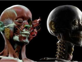 人物角色面部造型雕刻大师级ZBrush视频教程