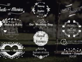 FCPX插件-12个4K婚礼标签文字标题动画
