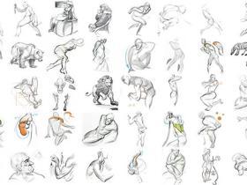 力动态表现绘画系列-FORCE-基础知识/表格/力的形状/人体解剖学
