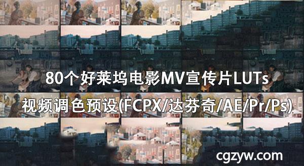 80组LUTs好莱坞电影胶片MV宣传片LUTs视频调色预设(FCPX达芬奇AEPrPs)